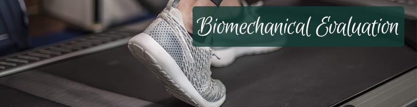 Biomech Eval.jpg