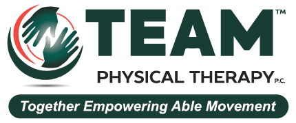 Teampt Logo.png